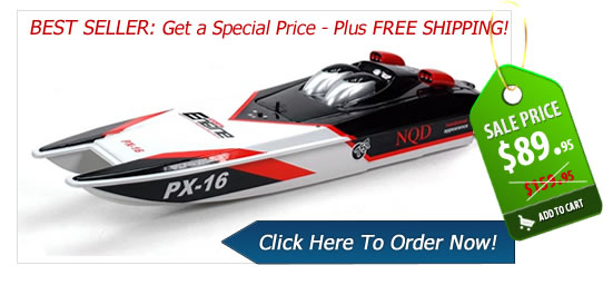 Net Where To Get Flying Fish Electric Rc Catamaran Boat
